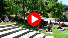 video_yogaWine